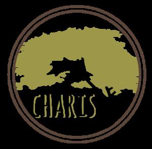 CharisThailandProject-logo-transparant-web