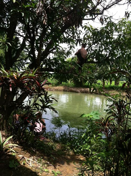 Fish pond/Swimming Hole